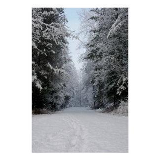 Winter Wonderland Road POSTER