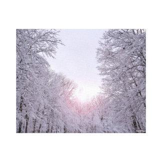 Winter wonderland snow covered landscape canvas print