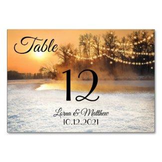 Winter Wonderland String Lights Table Number Card
