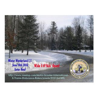 Winter Wonderland T.T. Postcard