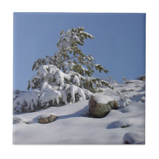 Winter Wonderland Tile