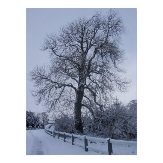 Winter Wonderland tree Poster