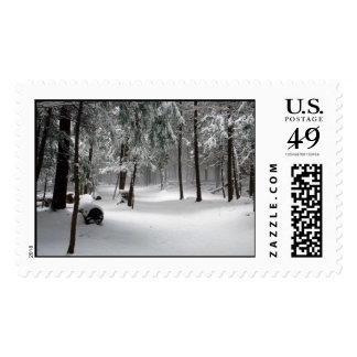 Winter Wonderland USA Forever Postage Stamp