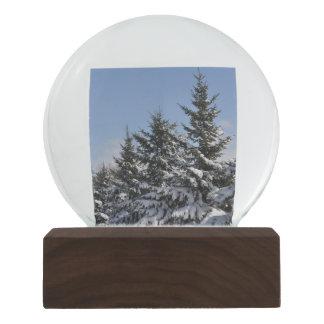 Winter Wonderland Walnut Snow Globe by Janz