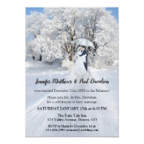 Winter Wonderland Wedding Reception Only Invitation