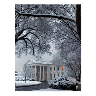 Winter Wonderland White House Postcard