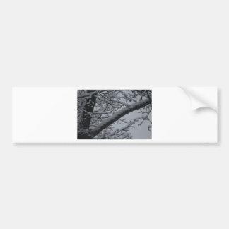 Winter wonderlands bumper sticker