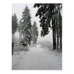 winter wood post card