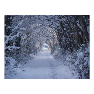 Winter Wooded Road Poster