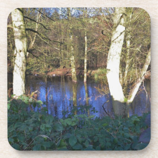 Winter Woodland Coasters
