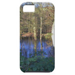 Winter Woodland iPhone 5 Covers