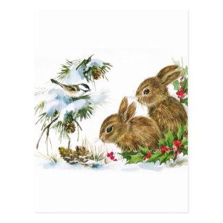 Winter Woodland Postcard