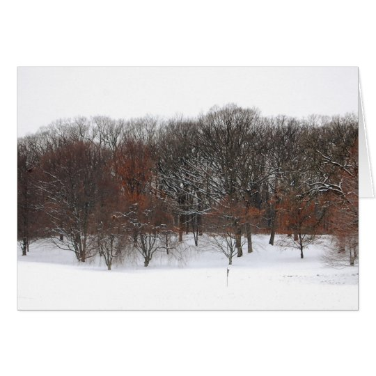 Winter woods. card