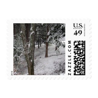 Winter Woods Postage Stamps