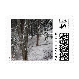 """Winter Woods"" Postage"
