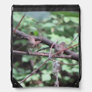 Winter Wren Pair Cinch Bag