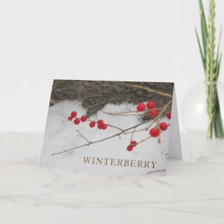 Winterberry Holiday Greeting Card