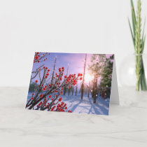 Winterberry in Ice Card