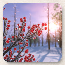 Winterberry in Ice Cork Coasters