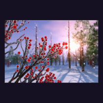 Winterberry in Ice Photo Print