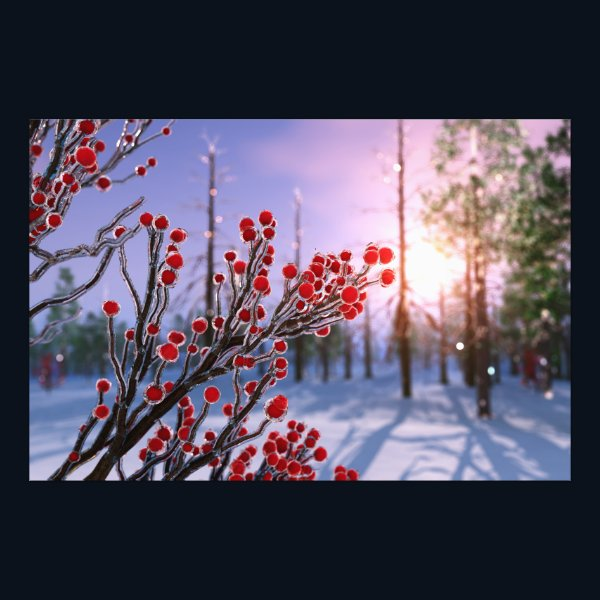 Winterberry in Ice Photo Print