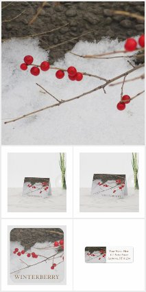 Winterberry Stationery Collection