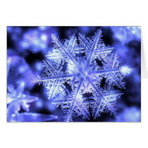 snow, snowflake, ice, crystal, Card with custom graphic design