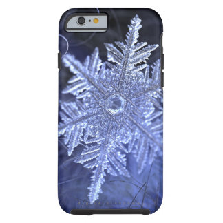 Winterborn Tough Case (iPhone 6 case)