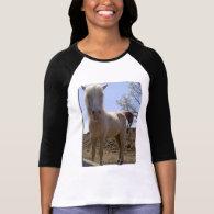 Winterhorse Perspective Tee Shirts