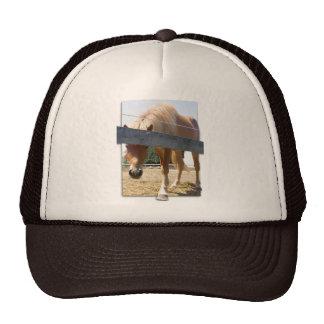 Winterhorse Trucker Hat