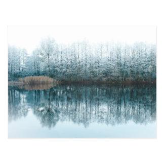 Winterimpressions1 Postcard