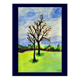 Wintering Pecan Trees Postcard