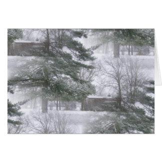 Winterland Snowtrees Tarjeton