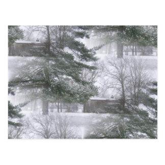 Winterland Snowtrees Tarjeta Postal