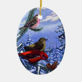 Winters Birds + Special Occasions Christmas Ornament