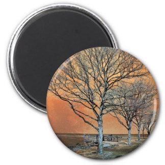Winter's Dawn Magnet