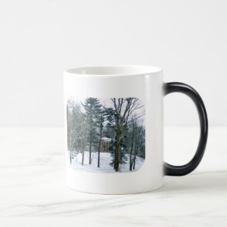 Winter's Day At Butler Mansion Winter Morphing Mug
