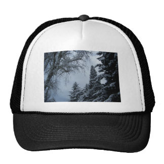 Winters day of old! trucker hat