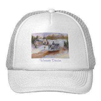 Winters Dream Hat