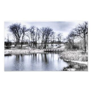 Winter's Finest Art Photo