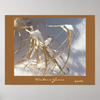 Winter's Grass Poster