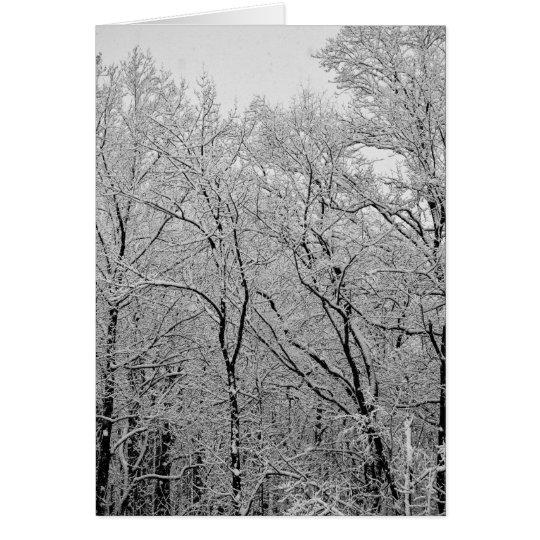 Winter's last breath card