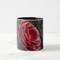 Winter's Parting Gift Mug