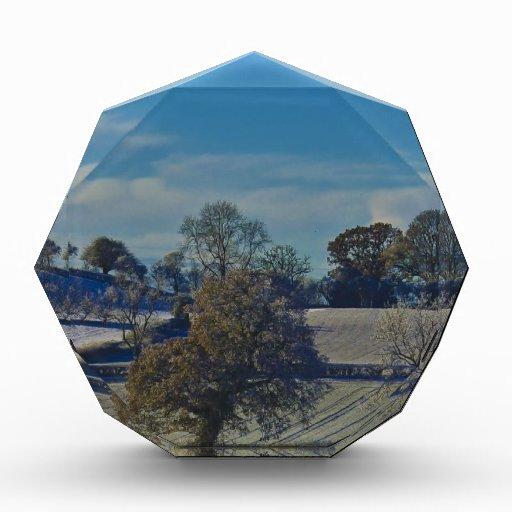Winters Scenery Acrylic Award