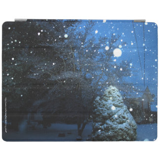 Winter's Tale iPad Cover