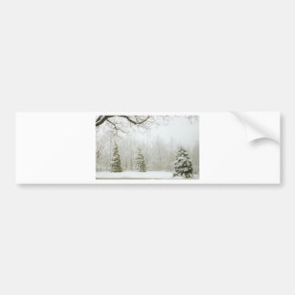 Winter's Trees Bumper Sticker