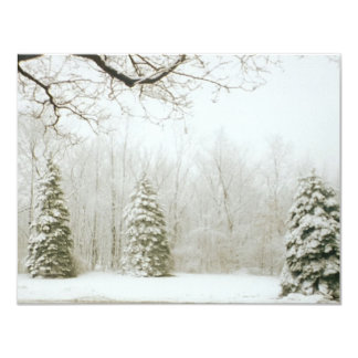 Winter's Trees Card