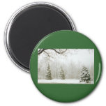 Winter's Trees Refrigerator Magnets