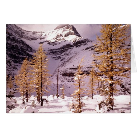 Winterscapes Card