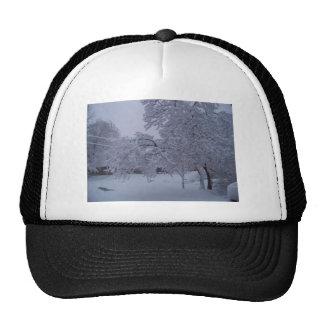 winterstorm2010 (Oklahoma) Gorros